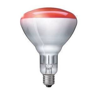 Heat Bulb 240v 150W Pack of 10 added to your basket