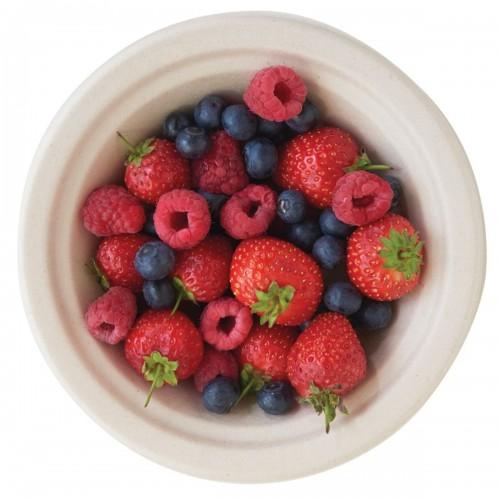 Plastico Eco-Fibre Small Bowl 14oz (Case of 1000) added to your basket